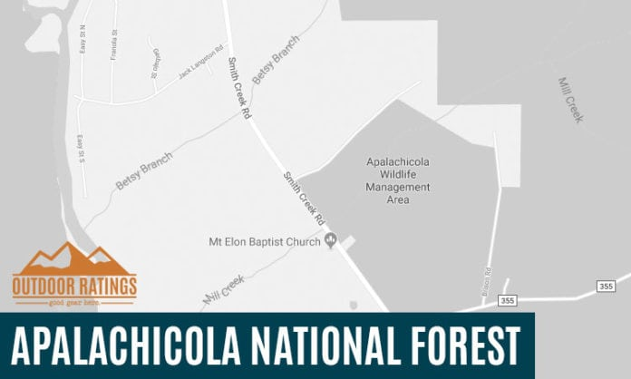 Camping in Apalachicola National Forest