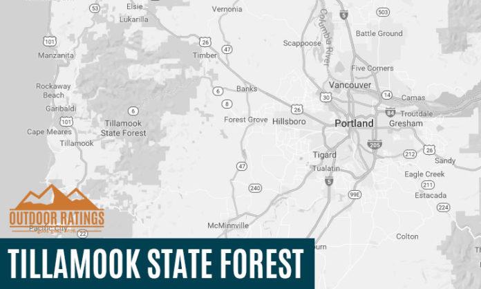 Tillamook State Forest Campsite